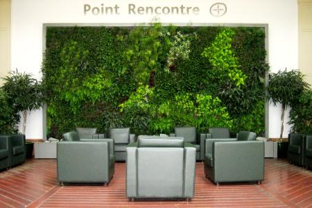 Slide d coration florale archives hr infos - Mur vegetal exterieur sans entretien ...